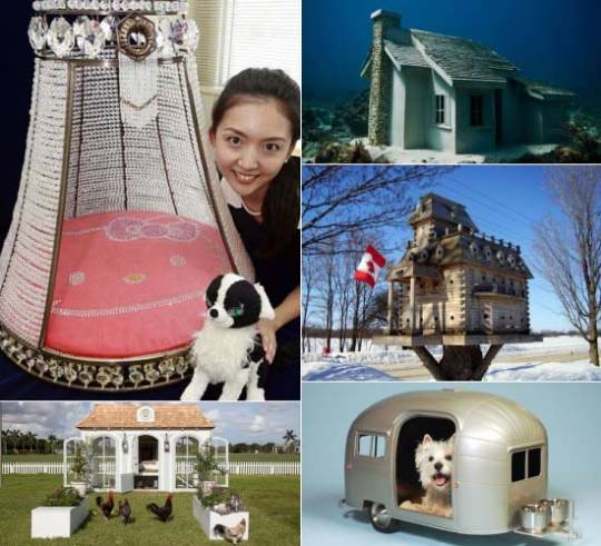Most expensive Pet Homes