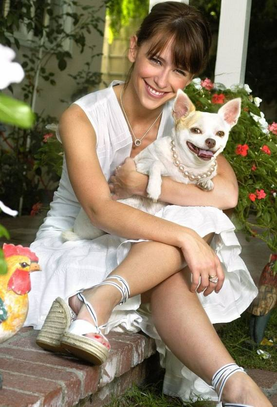 Chihuahua seems to be the 'pet' breed when it concerns celebrity women. Jennifer Love Hewitt owns a couple of them and seems to be totally in 'love'!
