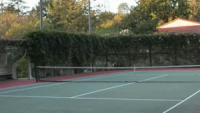 Elegant tennis court