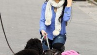 Hudgens' two pink clad dogs