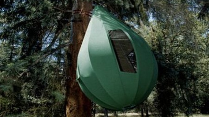 Camping with the $50,000 Tree Tent