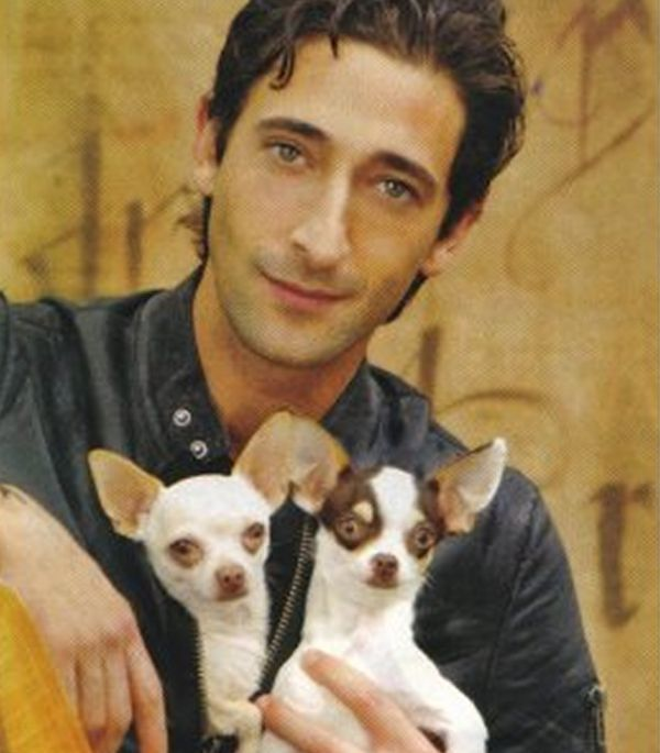 Photo of Adrien Brody & his  Dog Ceelo