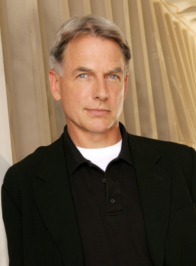 Mark Harmon 2013 Mark Harmon Net Worth ...