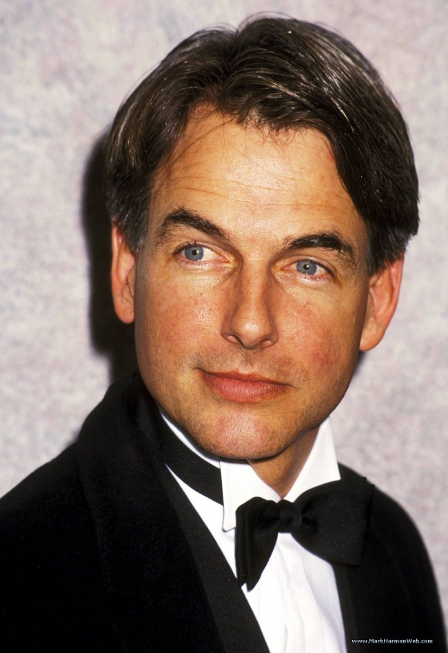 Mark Harmon Net Worth - biography, quotes, wiki, assets ...